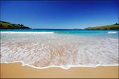 Chapter 10: Beach