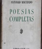 Libro de las poesías completas.