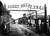 שער מחנה ההשמדה אושוויץ