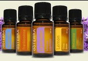 Optimal Wellness with Essential Oils Class