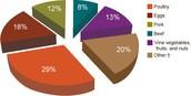 Salmonella Food Graph