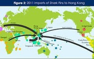 2011 Imports of Shark Fins