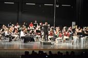 Symphonic Region Band