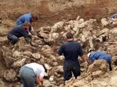 Mass Graves Bosnia