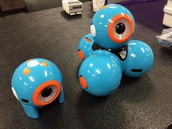 Wonder Robotics Meetings
