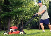 Fast Advice Of grass cutting - The Inside Track