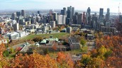 Spring and Fall in Montreal