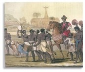 Plantation Sytems in the New World