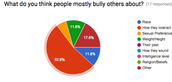 What do you think people mostly bully others about?