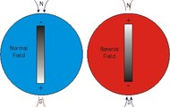 Pole Reversal