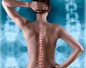 Chiropractic Services By Wasatch Spinal Care