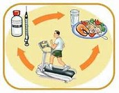 Diabetic diet, Blood sugar monitoring, Exercise