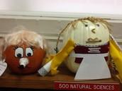 The pumpkins have arrived!