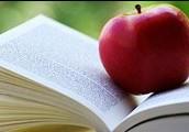 Lesen Mädchen gern? Schreibt mir!
