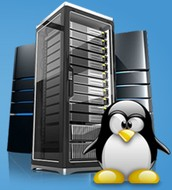 Causes To Get Perfect VPS Website hosting