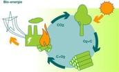 Winning van bio-energie