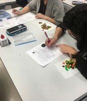 M&M Exponential Function Lab