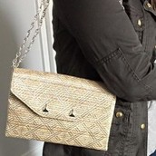 Metallic city slim clutch (chain not included)--$25, (orig. $49)