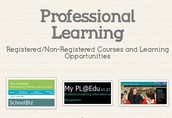 Professional Learning activities
