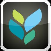 App 1: Socrative