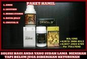 Crystal X Paket Hamil