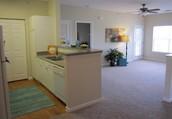 Luxury Apartment Living