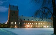 Premiärkväll för slottets julbord