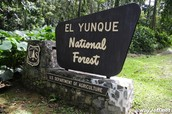 Sign of El Yunque National Forest