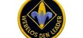 Webelos Leaders