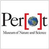 6th Grade Overnight at the Perot