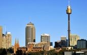 7.  Sydney Tower