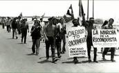 Latino Movement