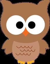 OWL HONORS
