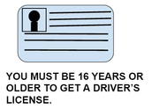 Driver's License