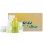Ginger Citrus Bath Duo - $58