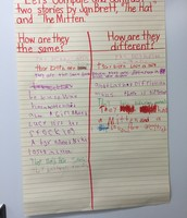 Comparing and Contrasting Stories by Jan Brett