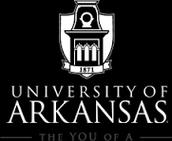 3. University of Arkansas