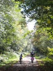 Biking the Chehalis Trail
