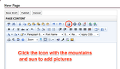 Click the Image Manager Icon