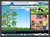 Edusmart Science K-8 and Biology