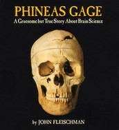 INSTRUCT:  Phineas Gage and new studies on Traumatic Brain Injury