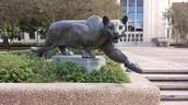 Cougar Statue