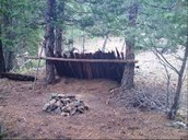 2. How to make a shelter?