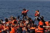 Syrian Refugees?