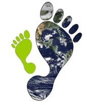 What does it mean to have an ecological footprint?