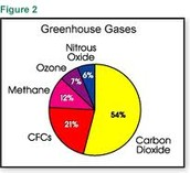 What does the word Greenhouse Effect mean?