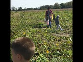 Finding the perfect pumpkin!