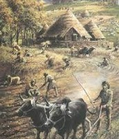 This is The First Farm animals