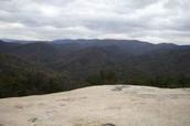 Horizion View