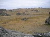 Plains of Rohan